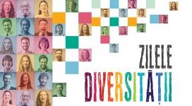 Zilele Diversității - cover